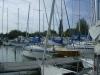 Kikötői csendélet